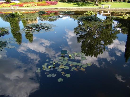 Foto parco giardino sigurt a valeggio sul mincio 550x412 autore simonetta stuani 20 di 23 - Parco giardino sigurta valeggio sul mincio vr ...