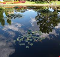 47470 parco giardino sigurta valeggio sul mincio
