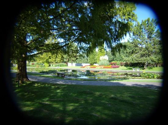Foto parco giardino sigurt a valeggio sul mincio 550x412 autore simonetta stuani 21 di 23 - Parco giardino sigurta valeggio sul mincio vr ...