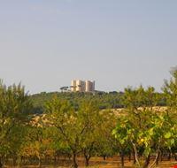 La vista di Castel del Monte