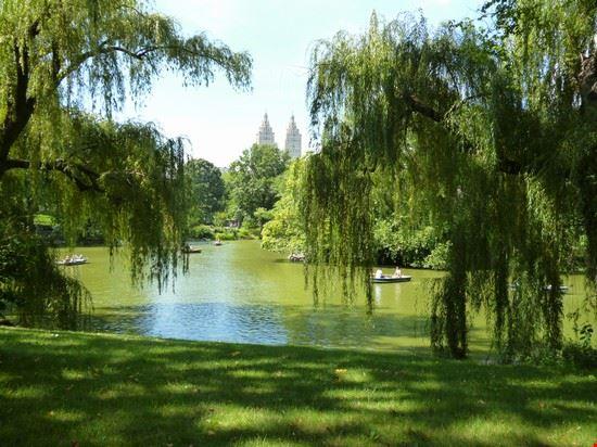 47596 central park new york