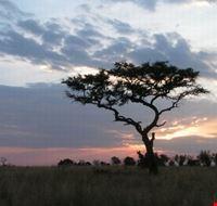 tsavo ovest tramonto nairobi