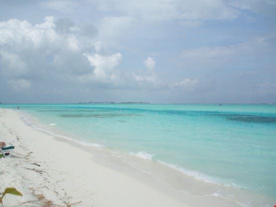 49677 isola deserta male