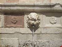 la fontana delle 99 cannelle l aquila