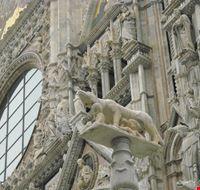 51164 particolare della facciata siena