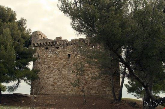 Torre Gallinara