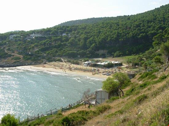 spiaggia nella baia