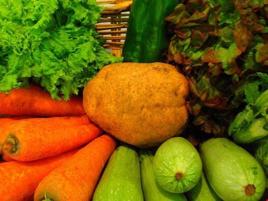 52050 bologna verdura