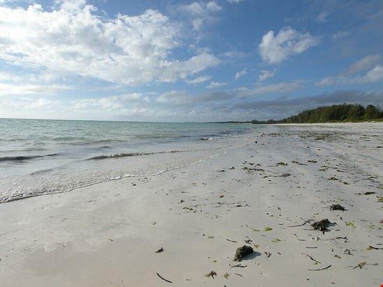 52652 zanzibar spiaggia di jambiani