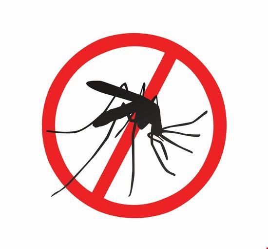 Proteggersi dalla Dengue