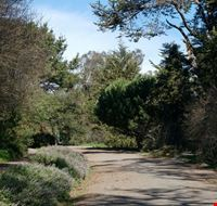 52801 san francisco l  ingresso del parco