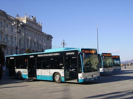 autobus 8 trieste orario - photo#7