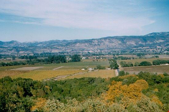 53046 san francisco il paesaggio della napa valley