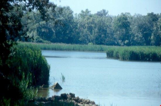 Le golene del fiume Po
