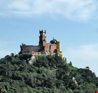 53132 vista del castello sintra