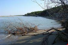 Spiaggia di Bassona, Ravenna