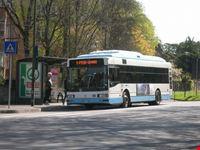 Bus a Ravenna