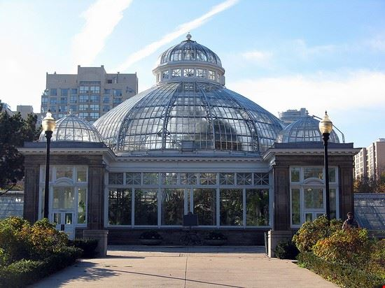 54362 toronto palm house ad allan gardens conservatory