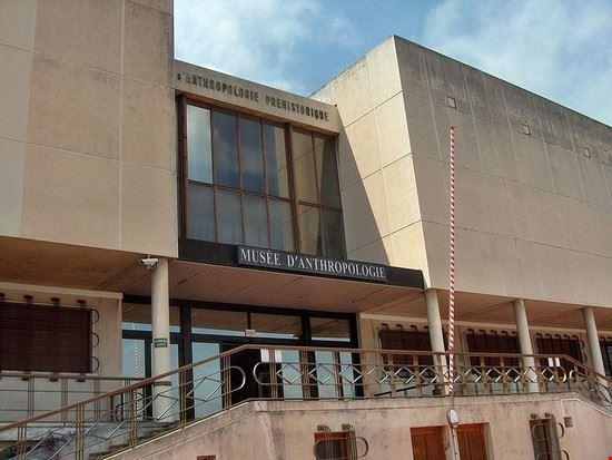 54597 nizza museo di antropologia umana a montecarlo