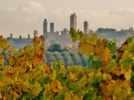 Campagna toscana: le torri fra le viti