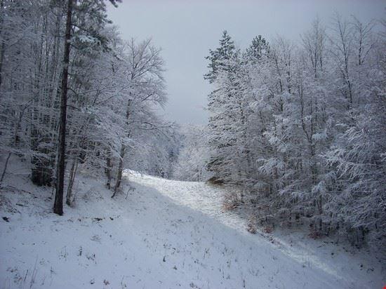 Nevicata al Villaggio Palumbo (Sila)