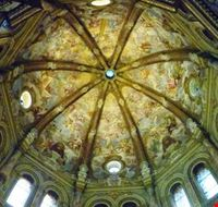 cupola crema