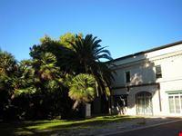 Villa Murri e le sue palme