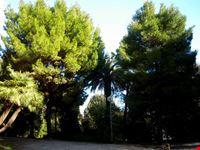 Il parco di Villa Murri