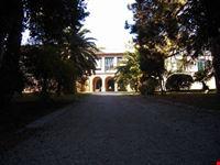 Villa Baruchello: il viale d'ingresso