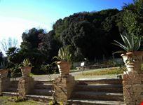 La fontana nel giardino e il bosco alle spalle