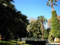La fontana circondata da palme