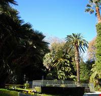 55881 porto sant  elpidio la fontana circondata da palme