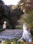 La scalinata delle sfingi che immette nel bosco