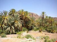 marrakech fint