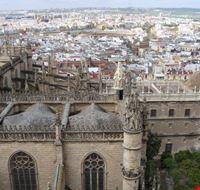 56496 siviglia cattedrale di siviglia