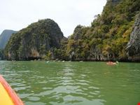 mangroven phuket