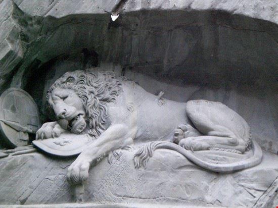 57114 leone ferito lucerna