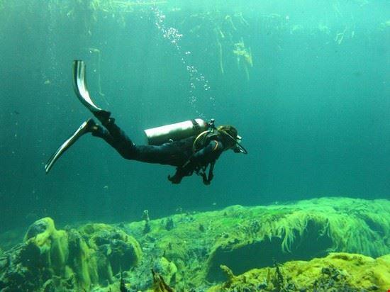 57449 tulum discover scuba diving in casa cenote