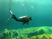 Discover Scuba Diving in Casa Cenote