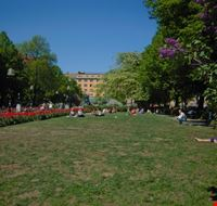 59002 stoccolma l  ampio prato nel parchetto della piazza