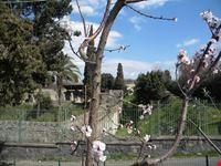 villa di dionigi pompei