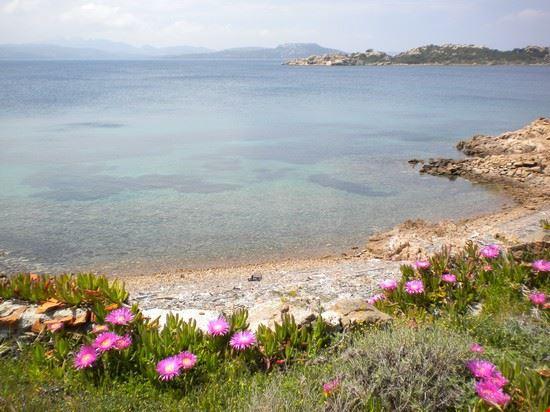 59713_natura_incontaminata_alla_maddalena_porto_cervo_costa_smeralda