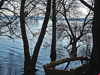 Lago di anguillara