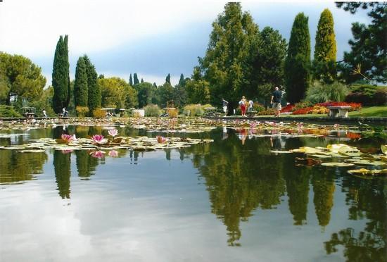 Valeggio sul mincio guida turistica - Parco giardino sigurta valeggio sul mincio vr ...