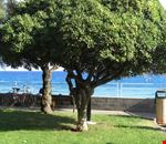Borgio, passeggiata a mare