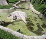 Zoo Le Cornelle