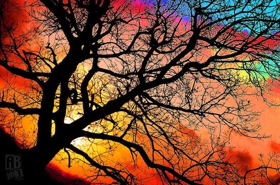 tramonto in Maremma Toscana
