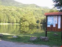 lago 11