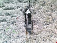al dila  del muro berlino