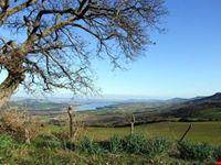 Bosco coste e diga di San Giuliano